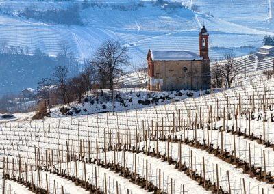 Winter in Monferrato
